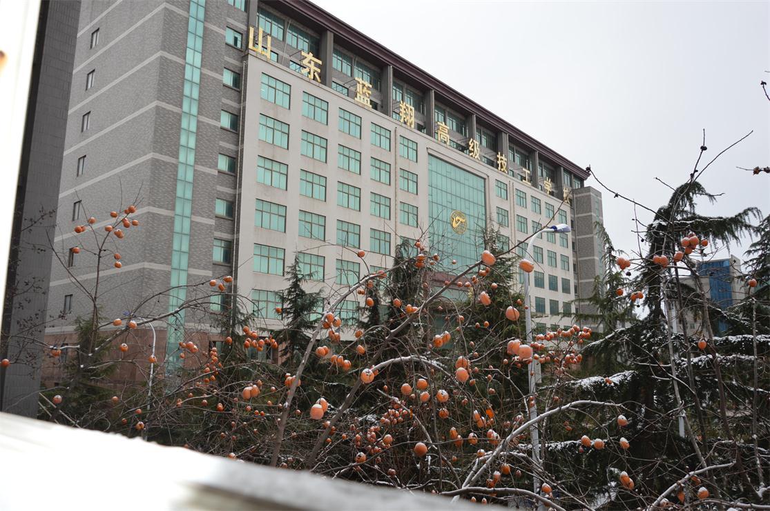 雷电竞注册雪景